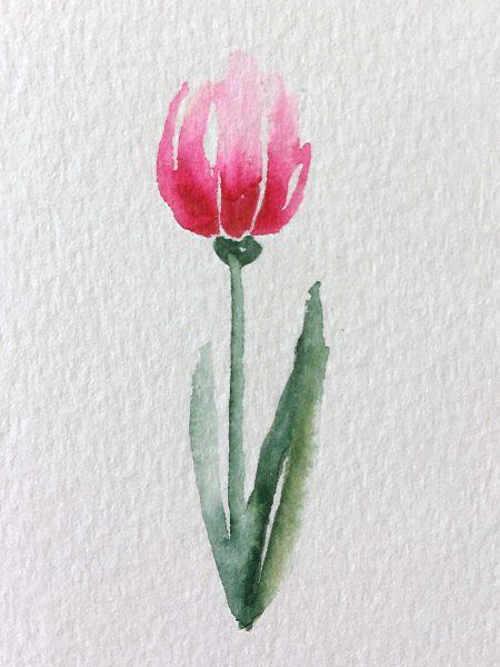 Tulpe mit Fineliner-Rand, gemalt mit Brushpens und Wasser