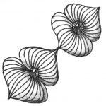 Zentangle Muster Elata