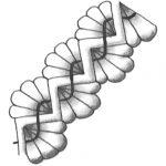 Zentangle Muster Fandango