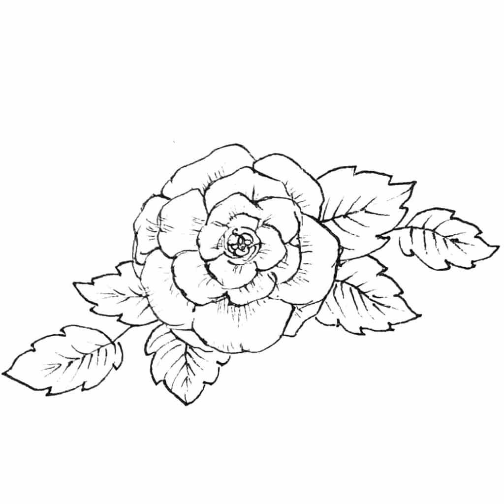 Rose Fineliner Zeichnung