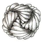 Zentangle Muster Hamadox