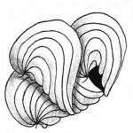 Zentangle Muster Piers